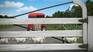 Thomas'Shortcut117