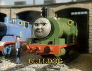 BulldogUStitlecard