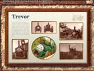 TrevorFactsBoard