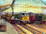 British Railways Diesels