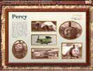 Percysfactsboard