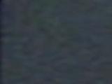 Miss Jenny's Land Rover