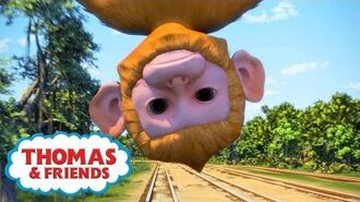 Thomas & Friends UK ⭐ Animals From Around The World 🐵🌍⭐Thomas & Friends New Series! ⭐