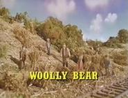 WoollyBearUSTitleCard2