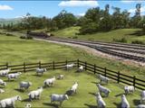 The Main Line Farm