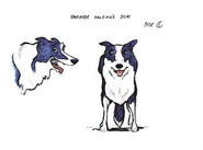 McColls Dog CGI Sketch Design 1