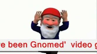 Youve been gnomed.wmv