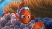 Marlin-finding-nemo-2