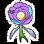 Flower2 p