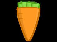 Carrot Body
