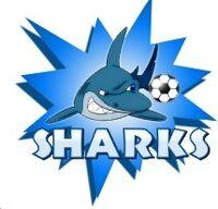 Lady Sharks