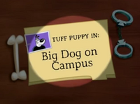 Big Dog On Campus Title Card