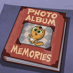 Kitty's photo album memories
