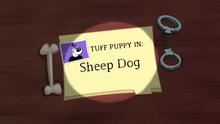 Sheep Dog (Title Card)