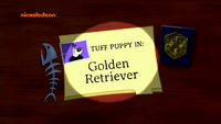 Golden Retriever (Title Card)