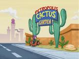 Petropolis Cactus Garden