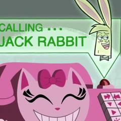 Calling Jack Rabbit.