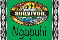NgapuhiFlag