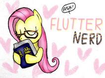Ask flutter-nerd
