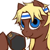 Ask black smith pony