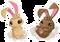 Dust Bunny (Icon)