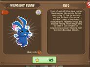 Wildflower Bunny 1 (Info)