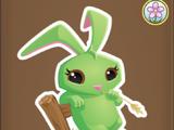 Prairie Bunny