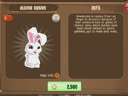 Albino Bunny (Info)
