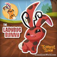 Ladybug bunny Credits to animaljamworld
