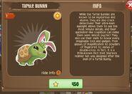 Turtle Bunny 1 (Info)