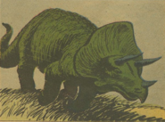 Triceratops 001