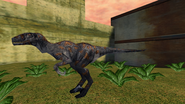 Turok Evolution Wildlife - Utahraptor (20)