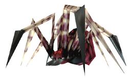 SPIDER-R