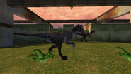 Turok Evolution Wildlife - Utahraptor (18)