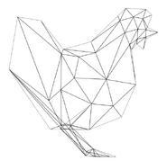 Turok Rage Wars Character Wireframe Chicken
