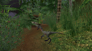 Turok Evolution Wildlife - Compsognathus (1)