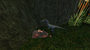 Turok Evolution Wildlife - Compsognathus (2)
