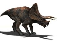 TriceratopsRender