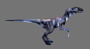 TE Raptor03