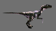 TE Raptor04