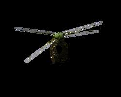 Dragonfly render