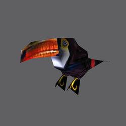 TE Toucan01