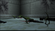 Turok 2 Seeds of Evil Enemies - Compsognathus (8)