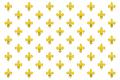 KingdomofFranceflag.png