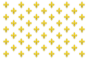 KingdomofFranceflag