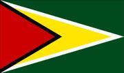 Flag-of-guyana