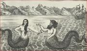 Mermaidmerman