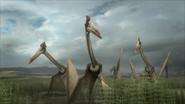 Hatzegopteryx-flock-1