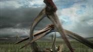 Hatzegopteryx-4