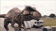 Giganotosaurus-13